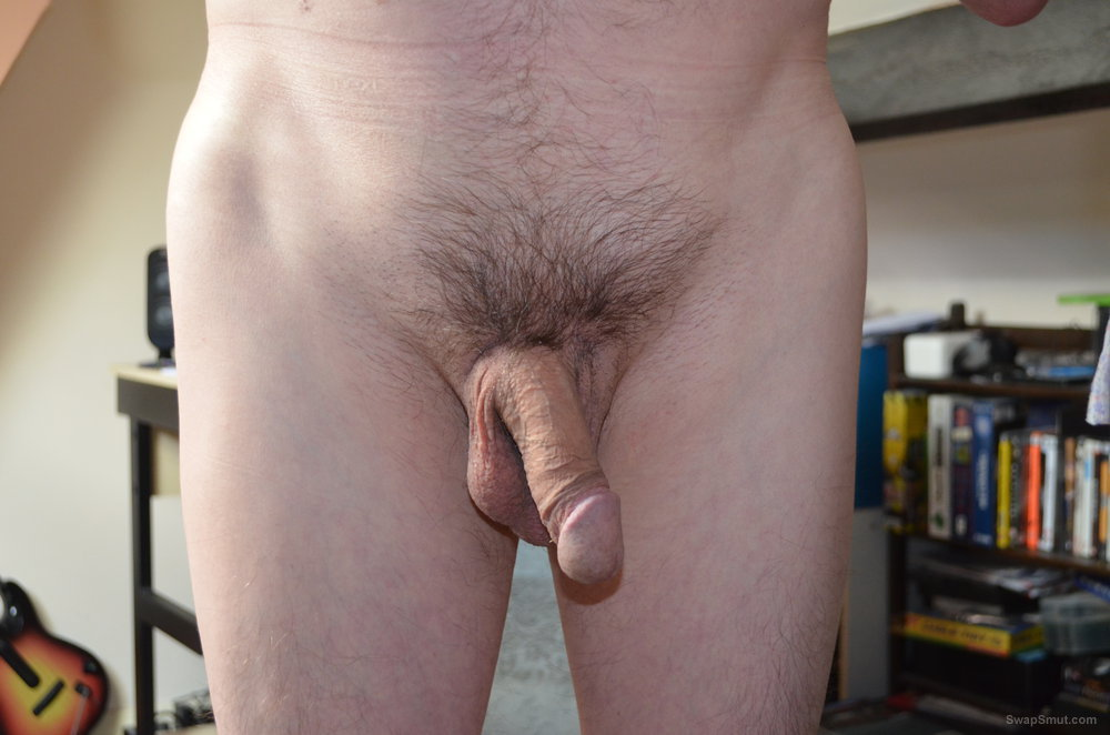 My cock ready for some action big juicy hairy cunt would be nice