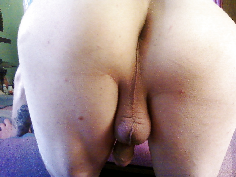My Butt And Asshole Posing In Different Positions Anal Sex Toy